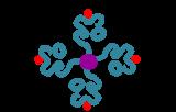 Tetramers